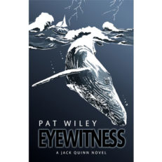 Eyewitness, a nautical murder mystery, Book 1 Jack Quinn Novel (mystery / suspense)